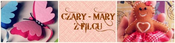 Czary Mary z filcu